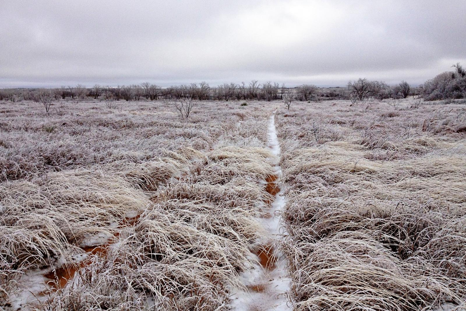 winter - ice storm
